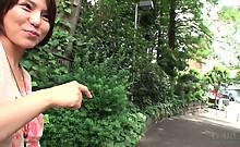 pgm_427ayumi